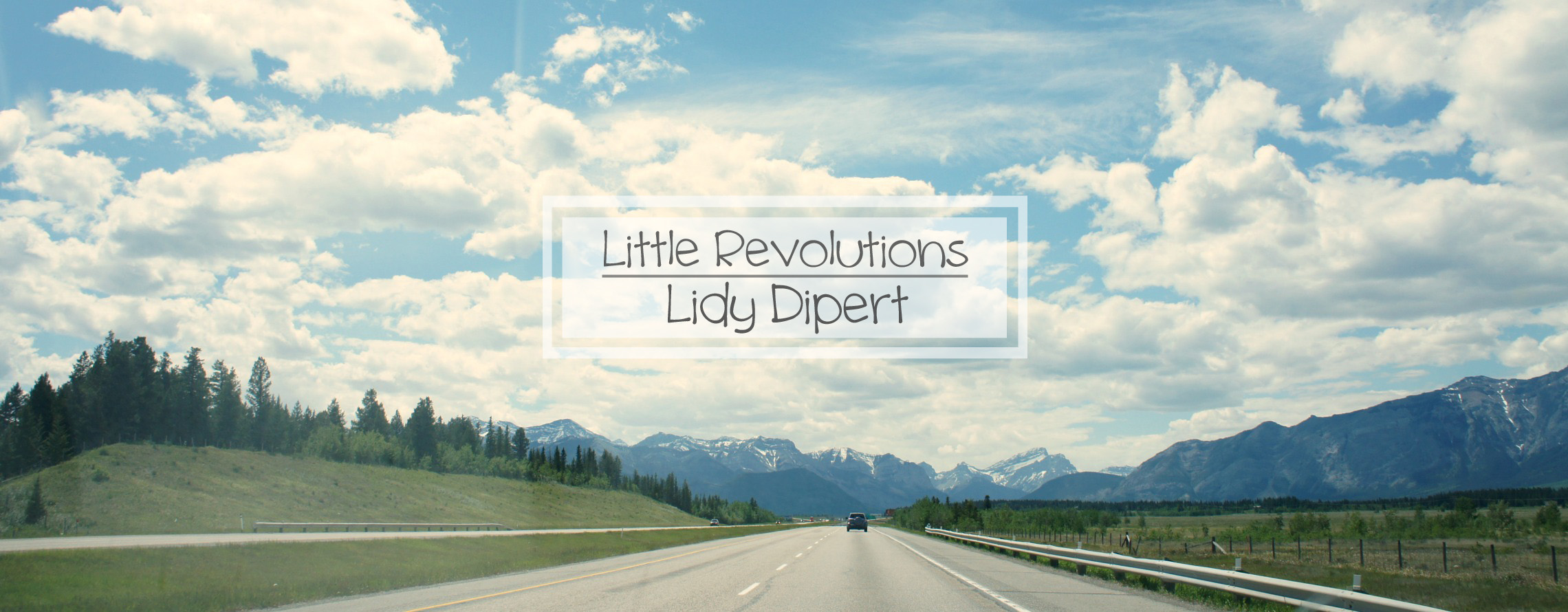 Little Revolutions: Lidy Dipert